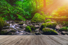 Forest stream running over mossy rocks with wooden walkway. Stock Photography