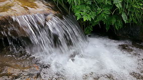 Forest stream running over rocks. Close up stock footage