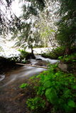 Forest stream spring snow. Water rushing over rocks in a small forest stream.  Spring snow on trees Stock Photos