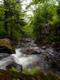 Forest stream under the rock Royalty Free Stock Image