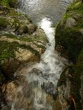 Forest stream waterfall. Forest creek stream waterfall landscape Royalty Free Stock Images