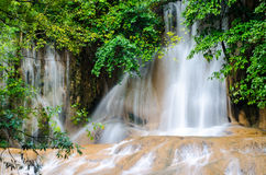 Forest Stream and Waterfall Stock Image