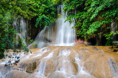 Forest Stream and Waterfall Royalty Free Stock Photography