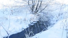 Forest stream in winter snow grass and trees beautiful nature landscape Royalty Free Stock Photo