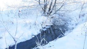 Forest stream in winter snow grass and trees beautiful nature landscape Stock Images