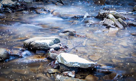 Forest stream in winter. Somewhere in south Poland Royalty Free Stock Images