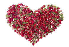 Forest Summer Heart  from  strawberries Royalty Free Stock Image