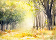 In forest. Sunny summer forest.Picture created with watercolors Royalty Free Stock Images
