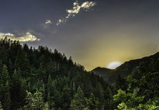 Forest Sunrise View Royalty Free Stock Photography