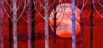 Forest sunset. Collage of hand-drawing and paper textures Royalty Free Stock Image