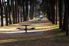 Forest tables to rest Royalty Free Stock Image
