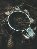 Forest Tea Stock Photo