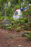 Forest Tent Camping Stock Photography