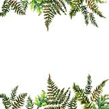 Forest tern watercolor wreath frame design with place for date and text. Bracken grass green border, Forest fern illustration. Forest tern watercolor wreath vector illustration