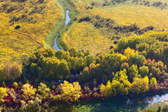 Forest terrain with creek in autumn, top view Royalty Free Stock Photos