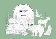 Forest Themed Vintage Sketch Images stock