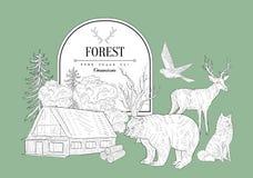 Forest Themed Vintage Sketch Illustration Stock
