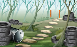 A forest with tires Stock Image