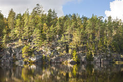 Forest on top of a cliff aside lake Stock Image
