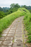 Forest trail in Bali, Ubud Royalty Free Stock Photo