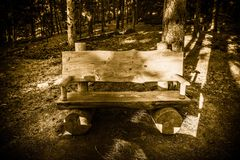 Forest Trail Bench arkivbild