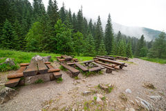 Forest trail in Tatra mountains Stock Photography