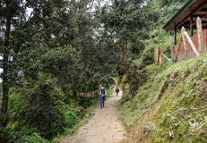 Forest trail to Taktshang Goemba stock photos