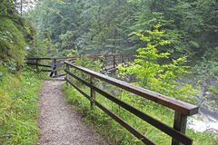 Forest trail. With wooden bridge over a mountain river Royalty Free Stock Photography