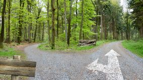 Forest Trails - Paths Of Decision. Two Different Ways stock image