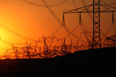 Forest of transmission towers  during sunset Royalty Free Stock Photos