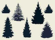 Forest Tree Royaltyfri Fotografi