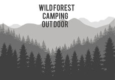 Forest Tree Arkivfoton