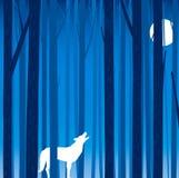 Forest tree background vector illustration