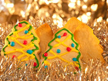 Forest of tree shaped Christmas cookies Stock Photo