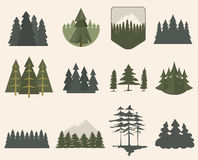 Forest tree silhouette set. Illustration with fir trees set isolated. Pine plant wood branch natural landscape element. Trunk environment deciduous abstract Royalty Free Stock Photo