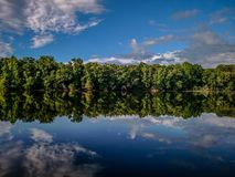 Forest treeline reflections in catawba river Stock Images