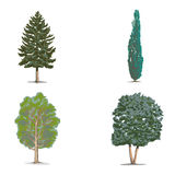 Forest trees. Different forest, desert and garden trees Stock Photography