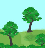 Forest trees. Illustration of green trees in forest Stock Illustration