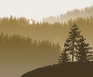 Forest trees BG. Vector Illustration of Forest and mountains in Skaetch style for Design, Website, Background, Banner. Fir tree silhouette Element Template Royalty Free Stock Image