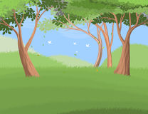 Forest trees on hill Royalty Free Stock Photo