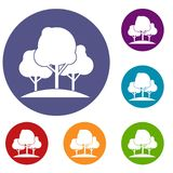 Forest trees icons set Stock Photography