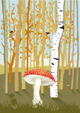 Forest Trees with Mushroom Stock Images