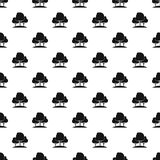 Forest trees pattern, simple style Stock Images