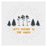 Forest. Trees. Pine. Spruce. Vector Typography Poster Design Concept. Set. Forest. Tree. Inspiring Creative Motivation Quote. Vector Typography Poster Design Stock Photo
