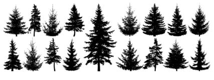 Forest trees set. Isolated vector silhouette. Coniferous forest. Christmas tree, fir-tree, pine, pine-tree, Scotch fir, cedar vector illustration