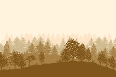 Forest trees silhouettes background Royalty Free Stock Photos