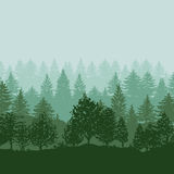 Forest trees silhouettes background Stock Photo