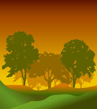 Forest trees silhouettes Royalty Free Stock Image