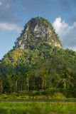 Forest tropical limestone mountain Stock Photography