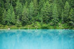 Forest and turquoise lake in the Dolomites apls, Italy. Sorapis lake in the Italy. Beautiful landscape at the summer time royalty free stock image